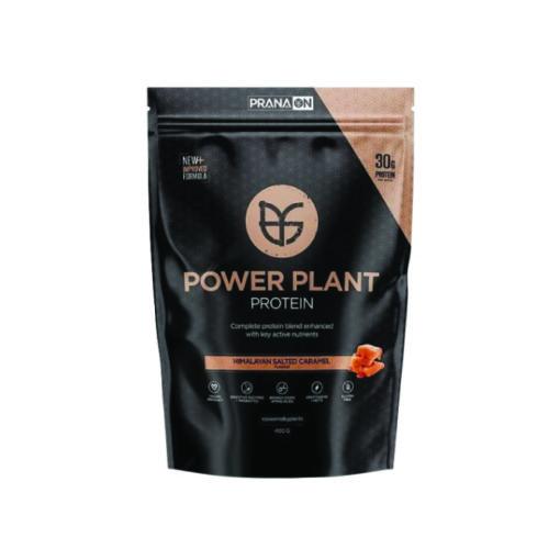 power plant protein 400g by prana
